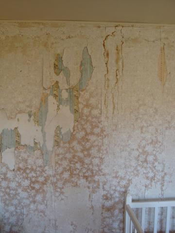 Finding Wyeth 9