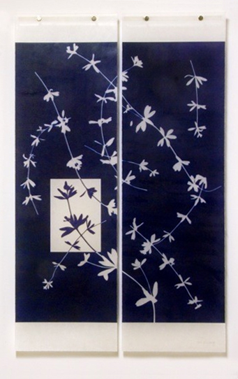 Jeri Eisenberg, Weeds (With Reversed Inset)