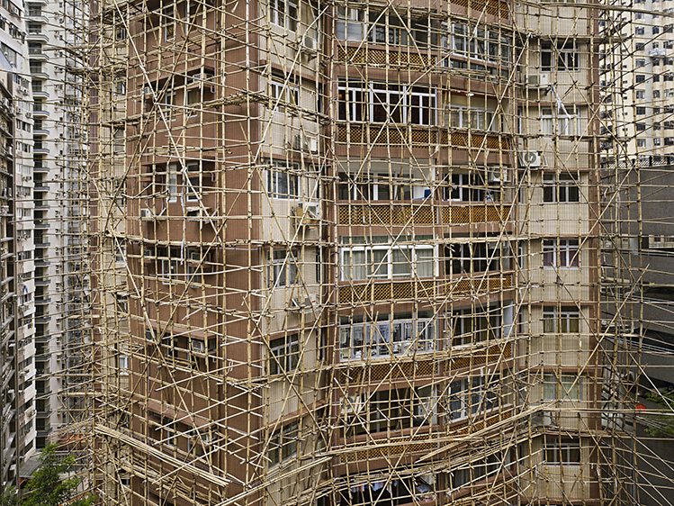 Bamboo Cage #2
