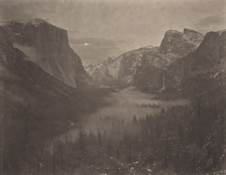 Silent Respiration of Forests — Yosemite #13