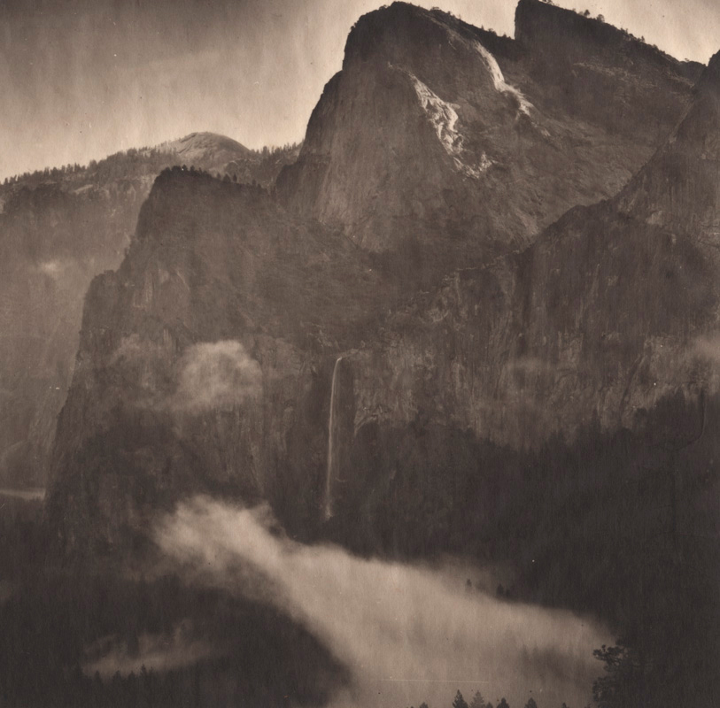 Silent Respiration of Forests — Yosemite #19