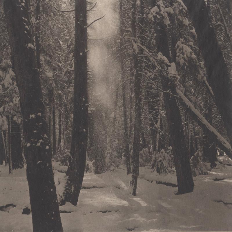 Takeshi Shikama, Yosemite #9