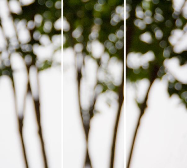 Jeri Eisenberg, Sojourn in Seasons, Towards the Overlook