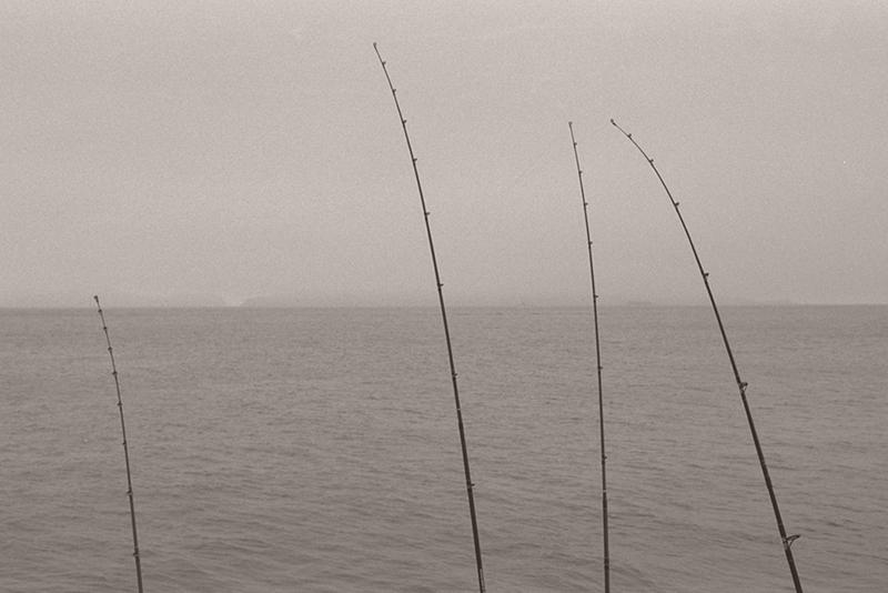 Four Fishing Poles