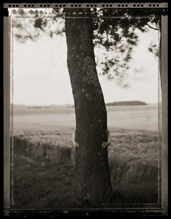 Peter Erikssen,  Tree Hugger
