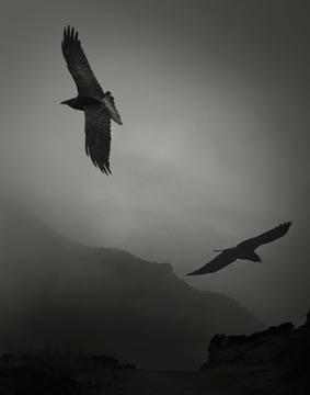 Beth Moon, Odin's Cove #3
