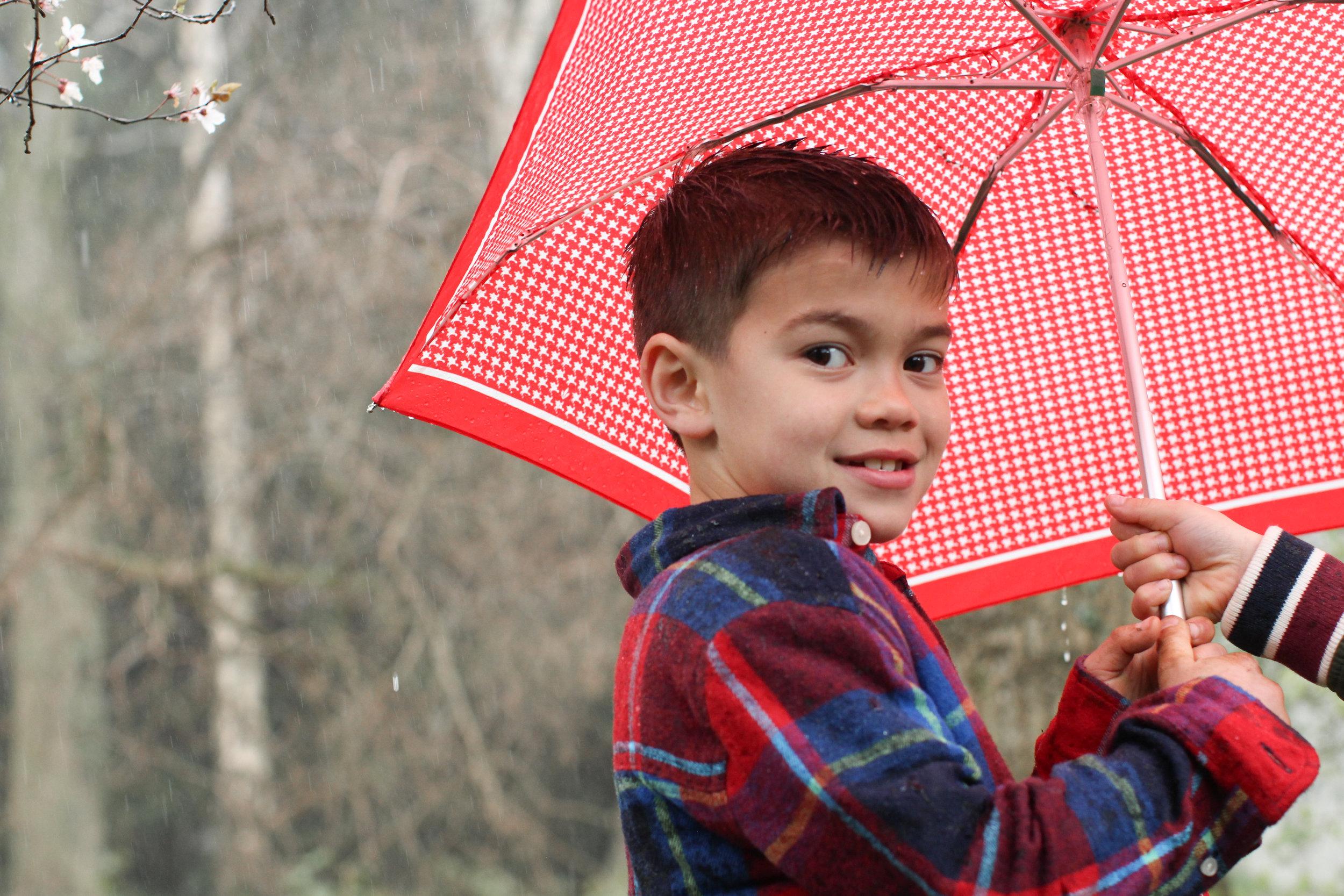 Raining at Thorp Perrow