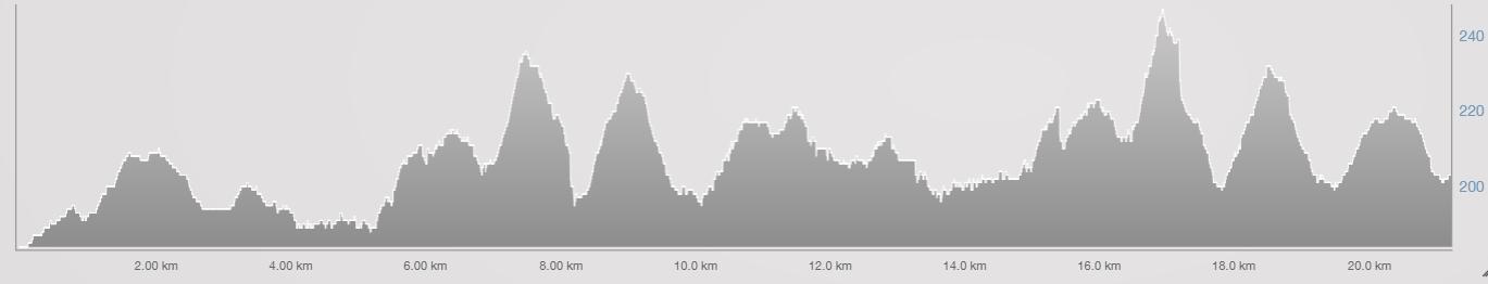 Ironman 70.3 WC run course profile