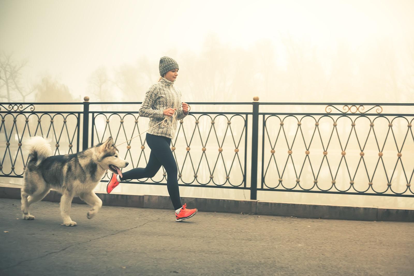 Online Running Program.jpg