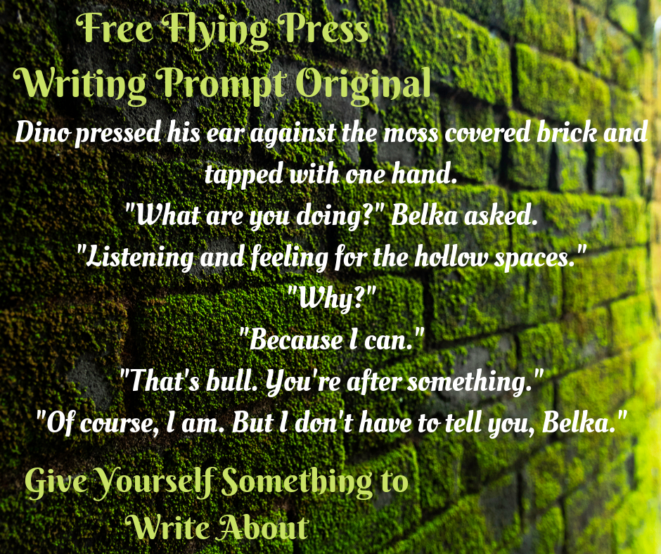 Writing Prompt Original by Montgomery Mahaffey from Free Flying Press