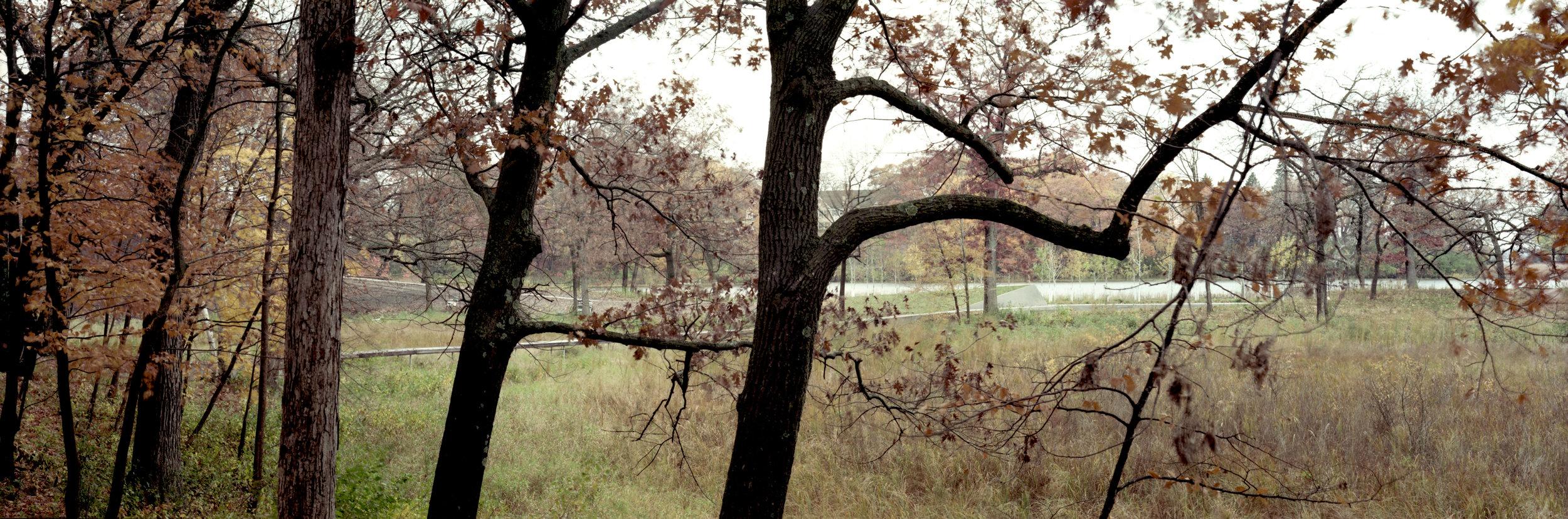 Lake Marion029_edit.jpg