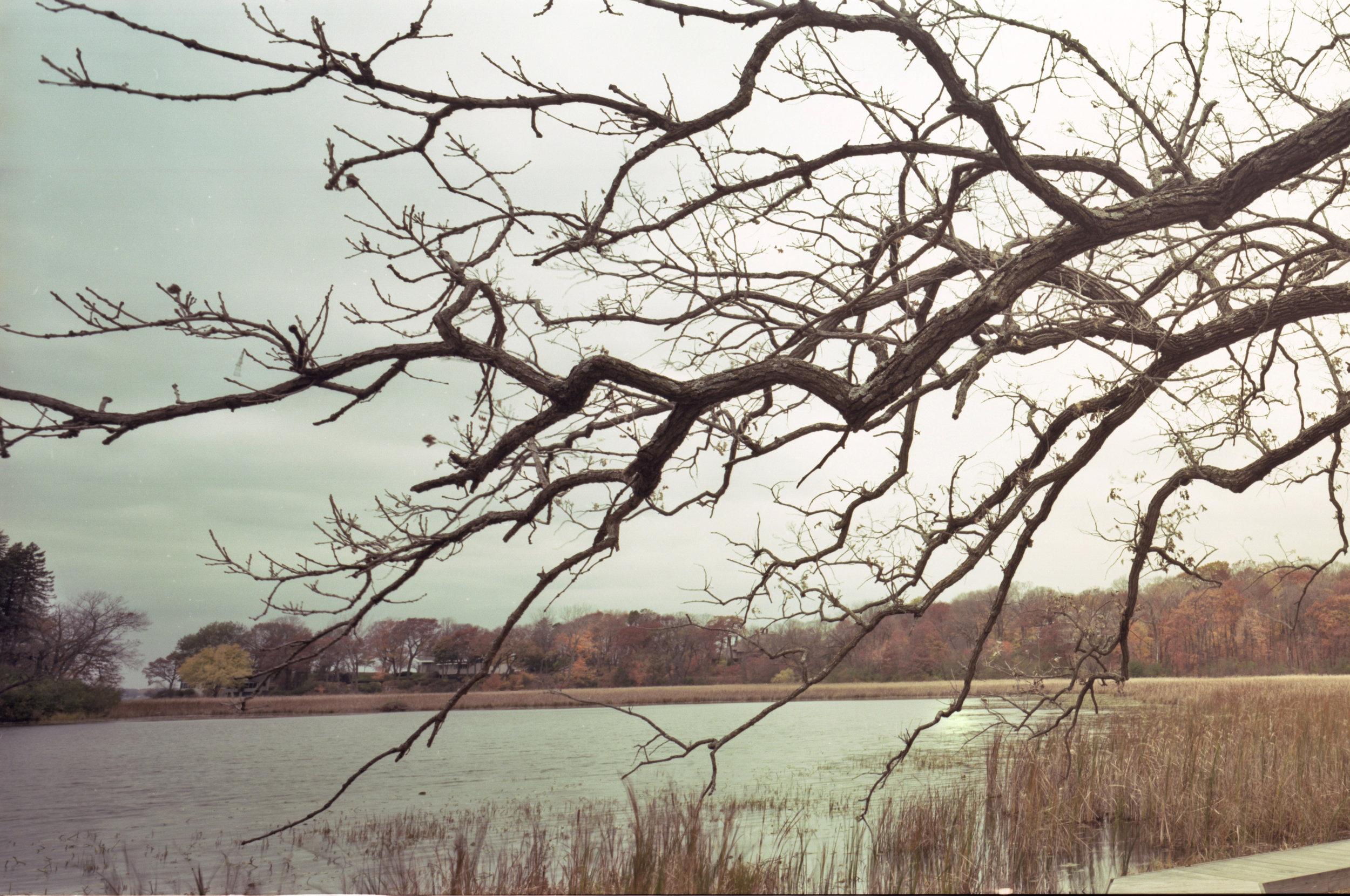 Lake Marion006_edit_web1.jpg