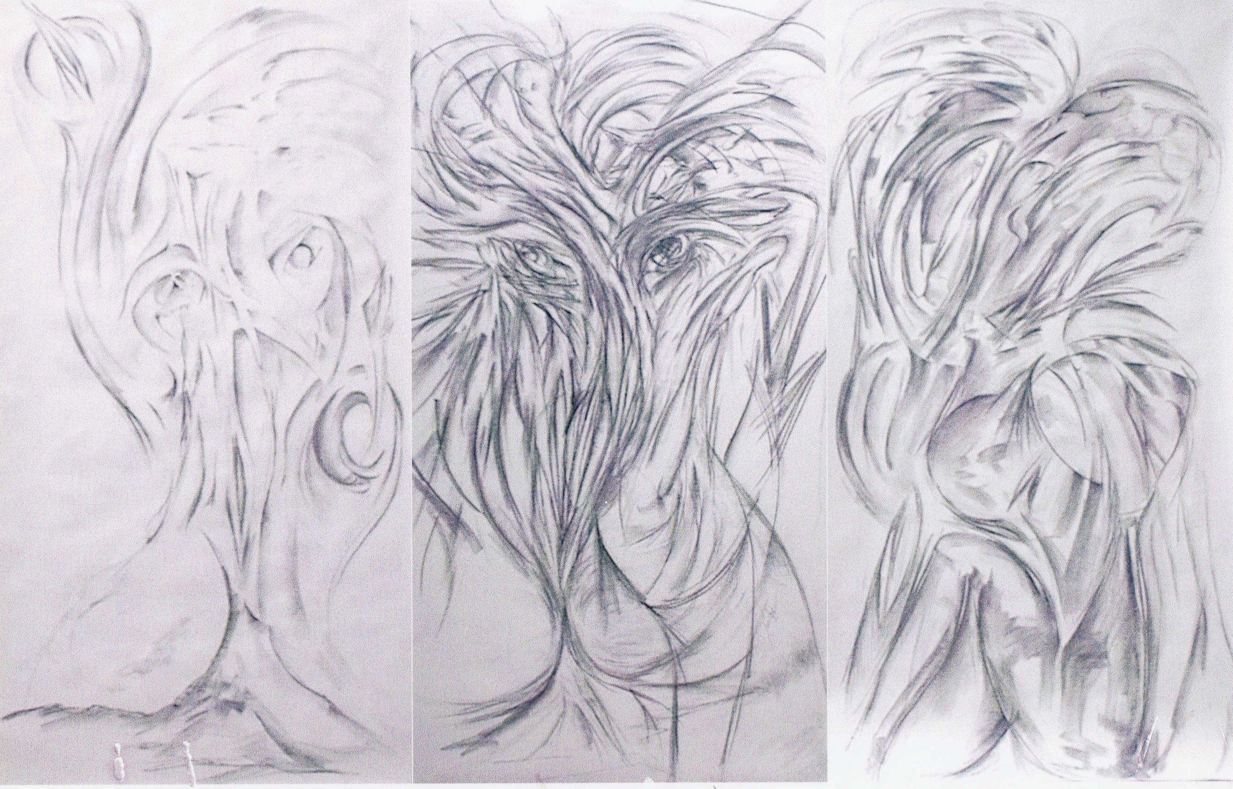 1999 large drawings.jpg