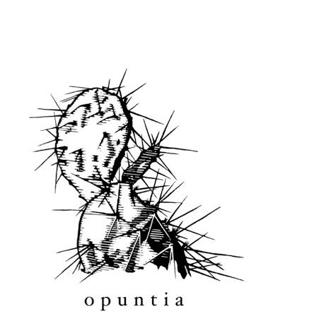 Opuntia-logo.jpeg