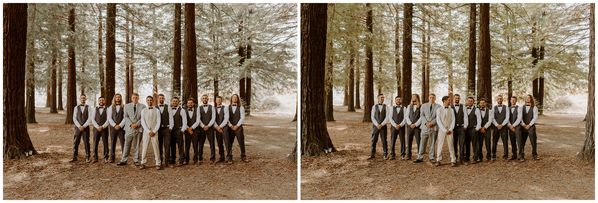 Redwood Festival Wedding Humbolt California - Jessica Heron Images_0023.jpg