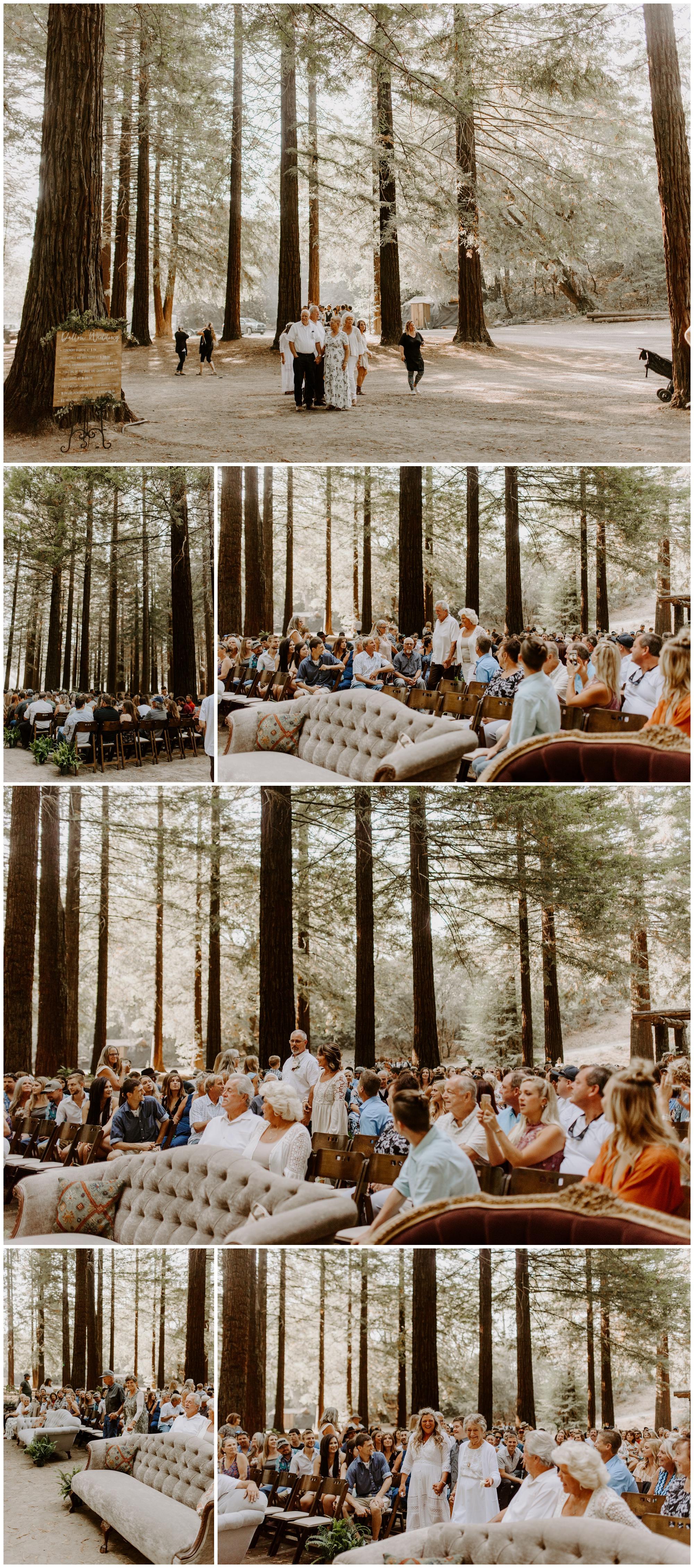 Redwood Festival Wedding Humbolt California - Jessica Heron Images_0030.jpg