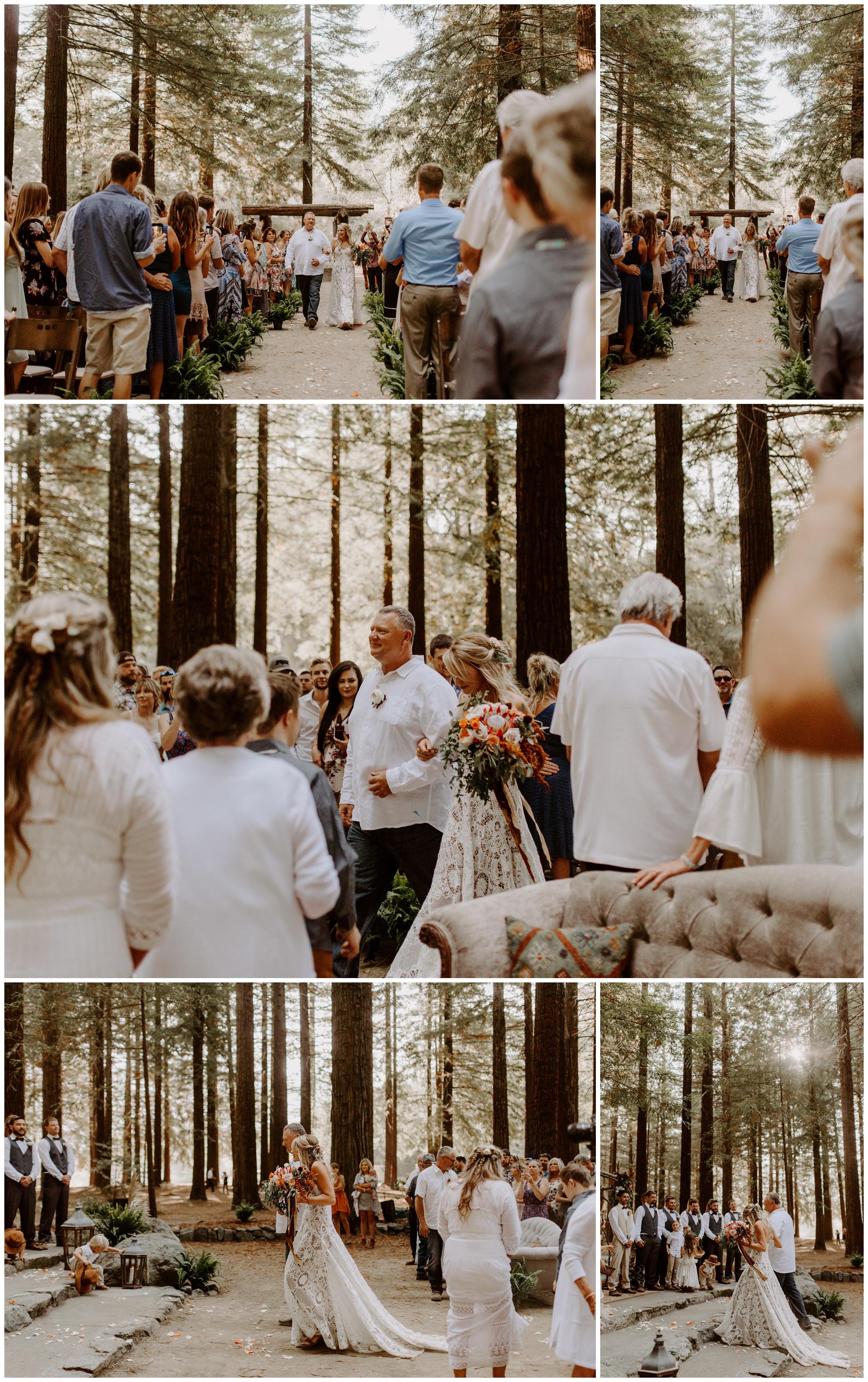 Redwood Festival Wedding Humbolt California - Jessica Heron Images_0036.jpg
