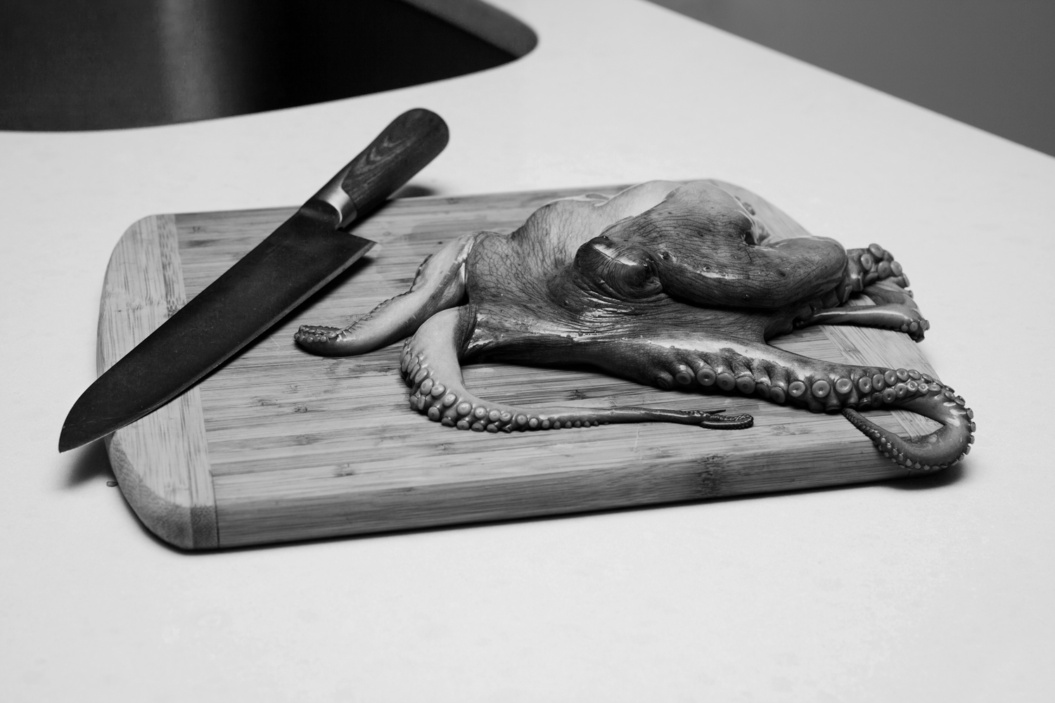 octopus_and_knifebw.jpg
