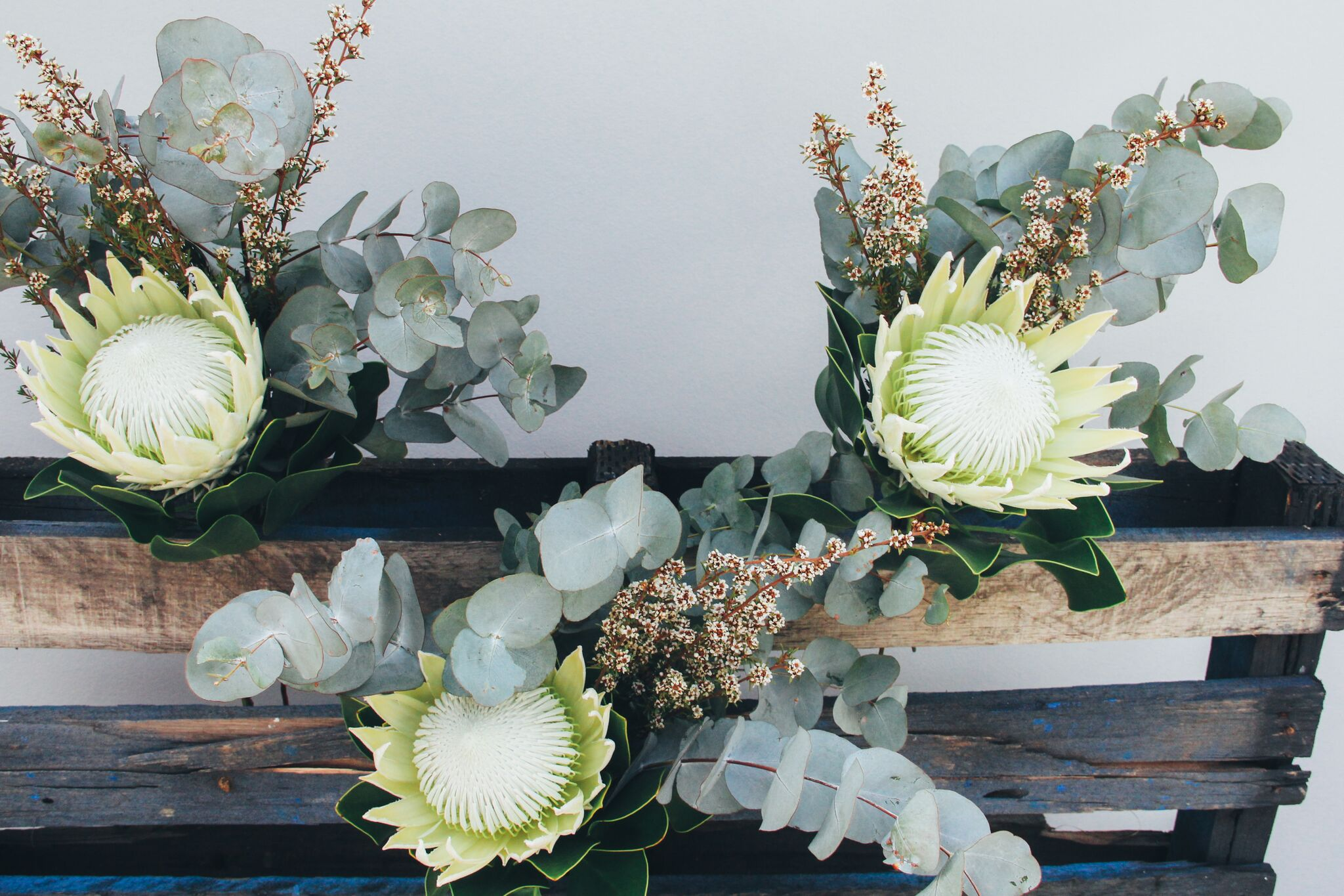 Bridesmaid Bouquets.jpg