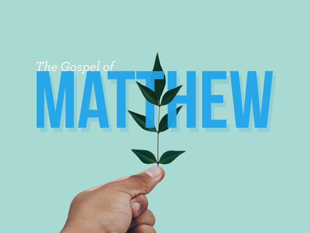 Matthew (1).jpg