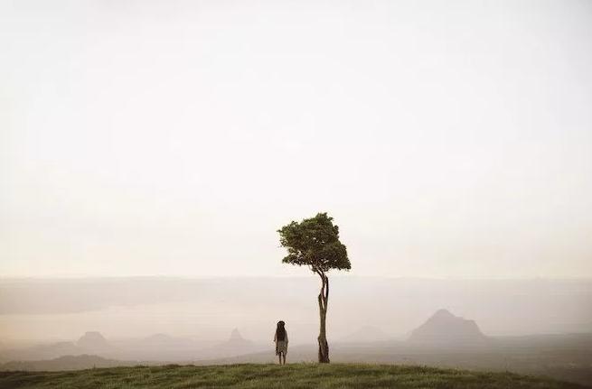 One Tree Hill, Maleny
