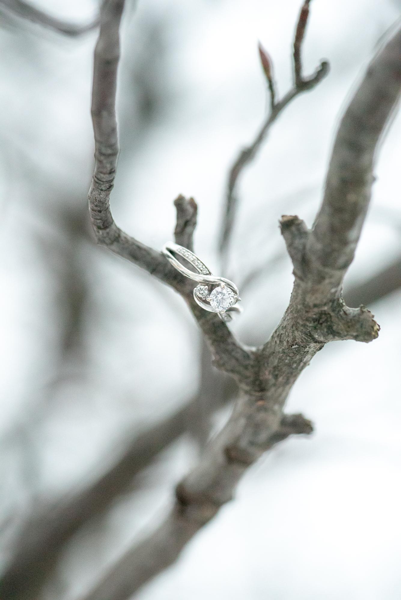 E&T Engagement-114.jpg