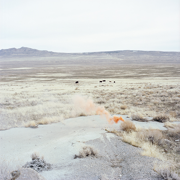 Michelle Buhler/A Heavy and Dull Detonation Shook the Ground, 2011