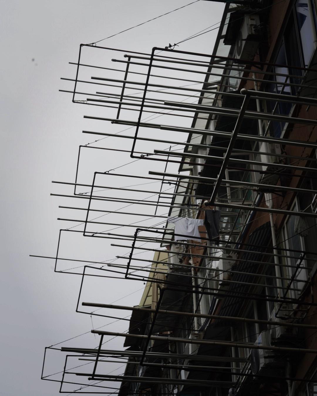 Shanghai Frames, 2019