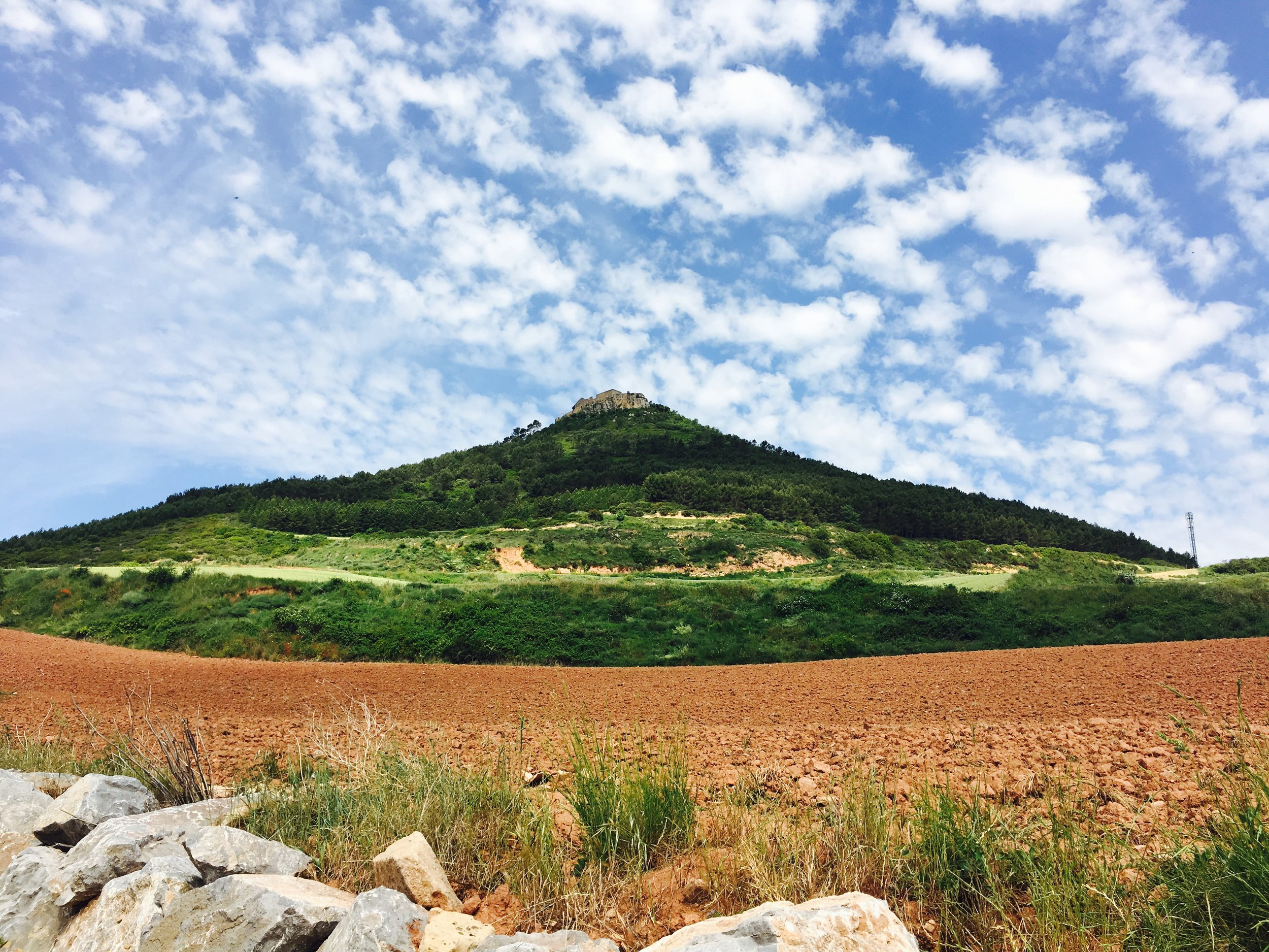Camino_Day 5.jpg
