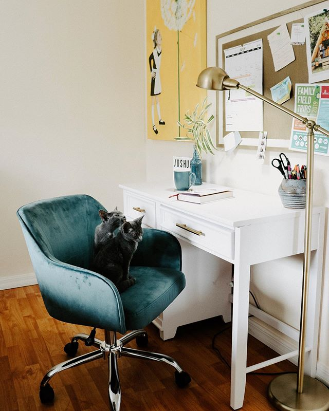 Hi  Blog post with all the office space deets is up!  Kittens not included .