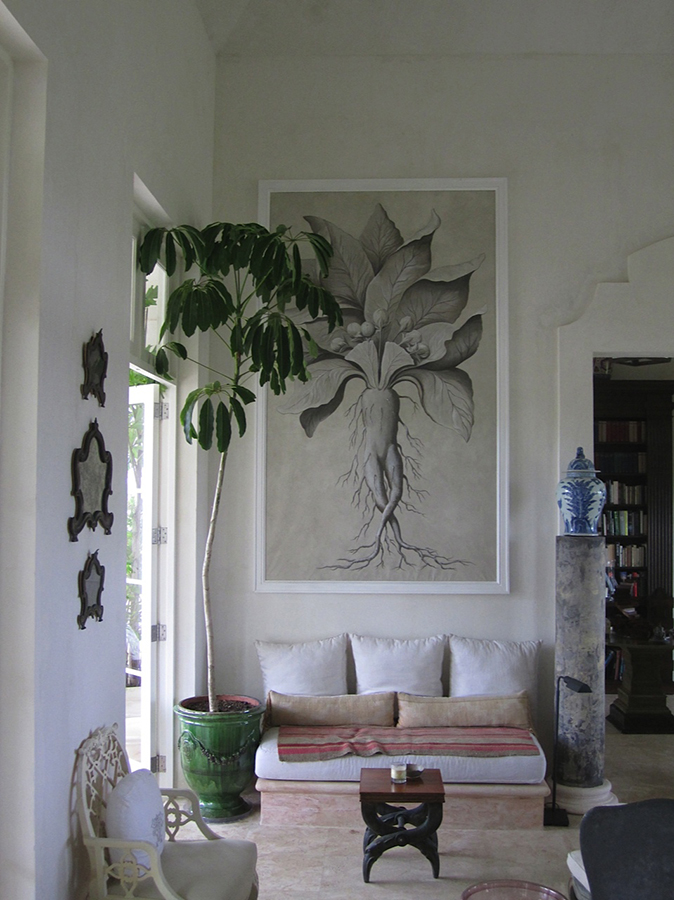 style_residential_dominican_republic_1184.jpeg