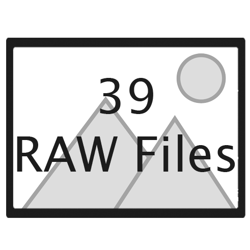 39 RAW files.png