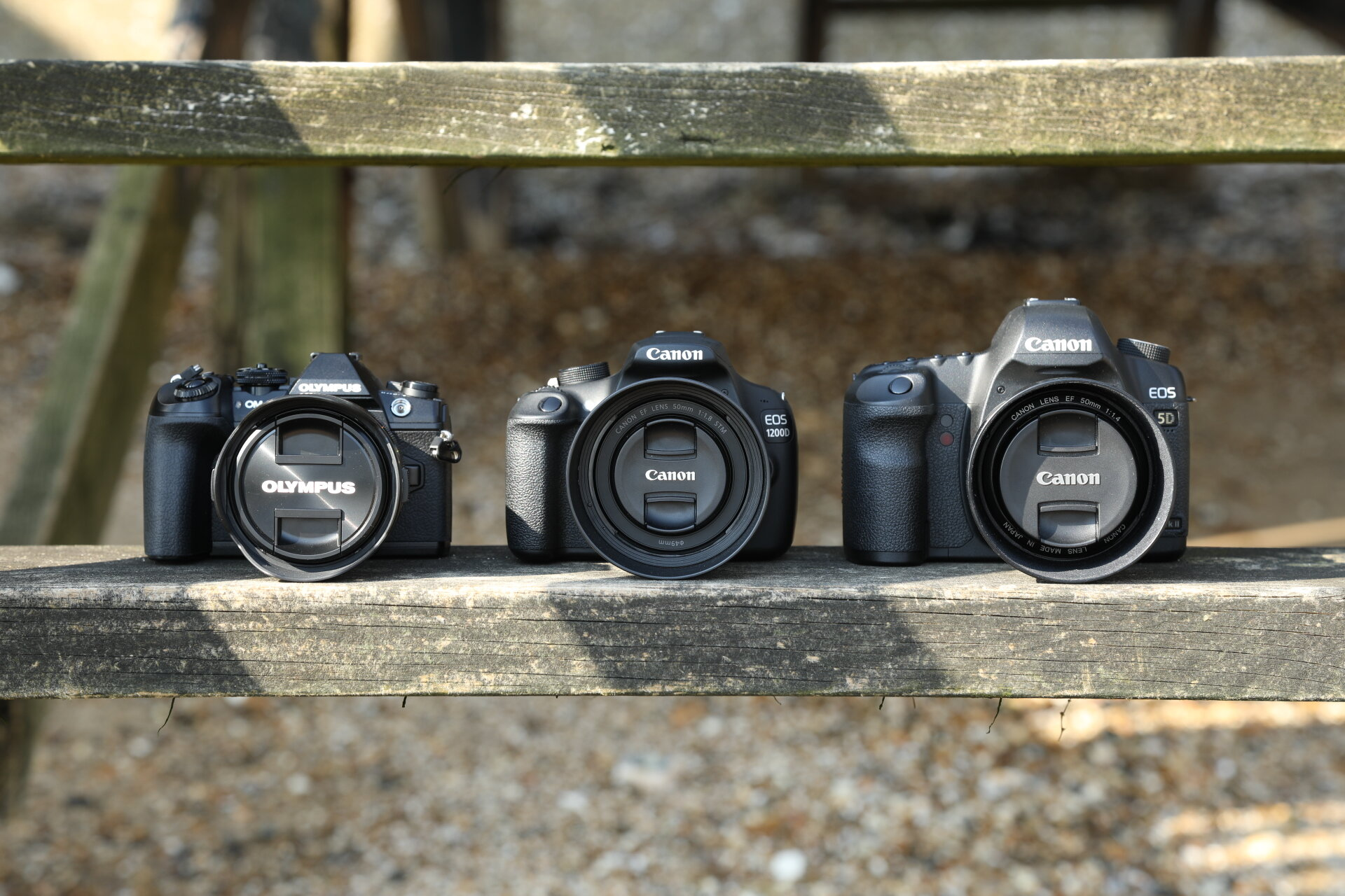 Sensor Sizes Explained The School Of Photography Courses Tutorials Books