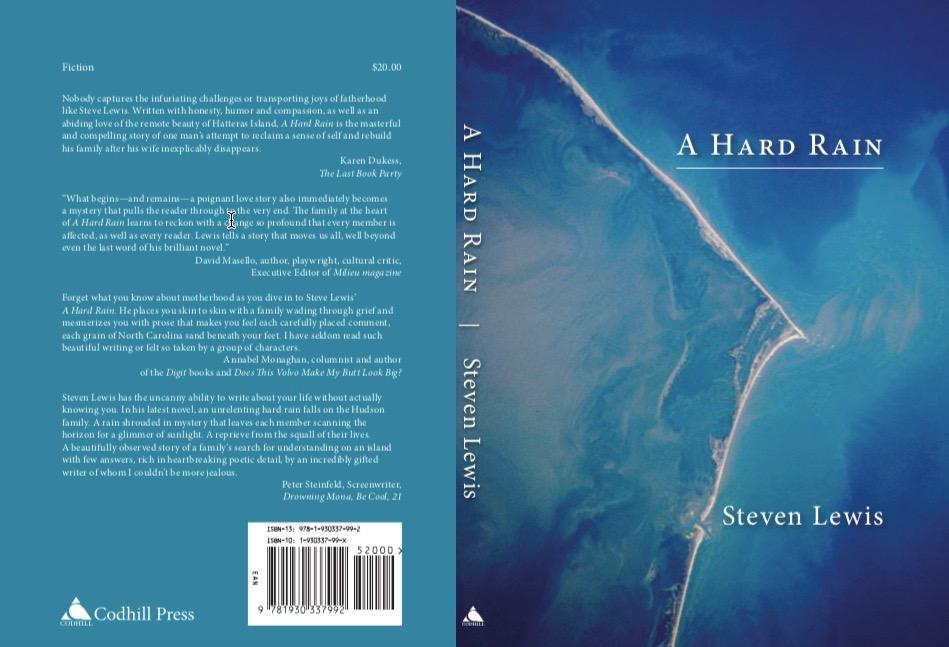 https://hudsonvalleyone.com/2019/01/10/the-lady-vanishes-new-paltz-author-steven-lewis-publishes-a-hard-rain/?fbclid=IwAR3Bsxan9mUs1mr_DXQAvhyoCEpxLHDbmGpona0Amlwk8VO9zRYF2av4RNk