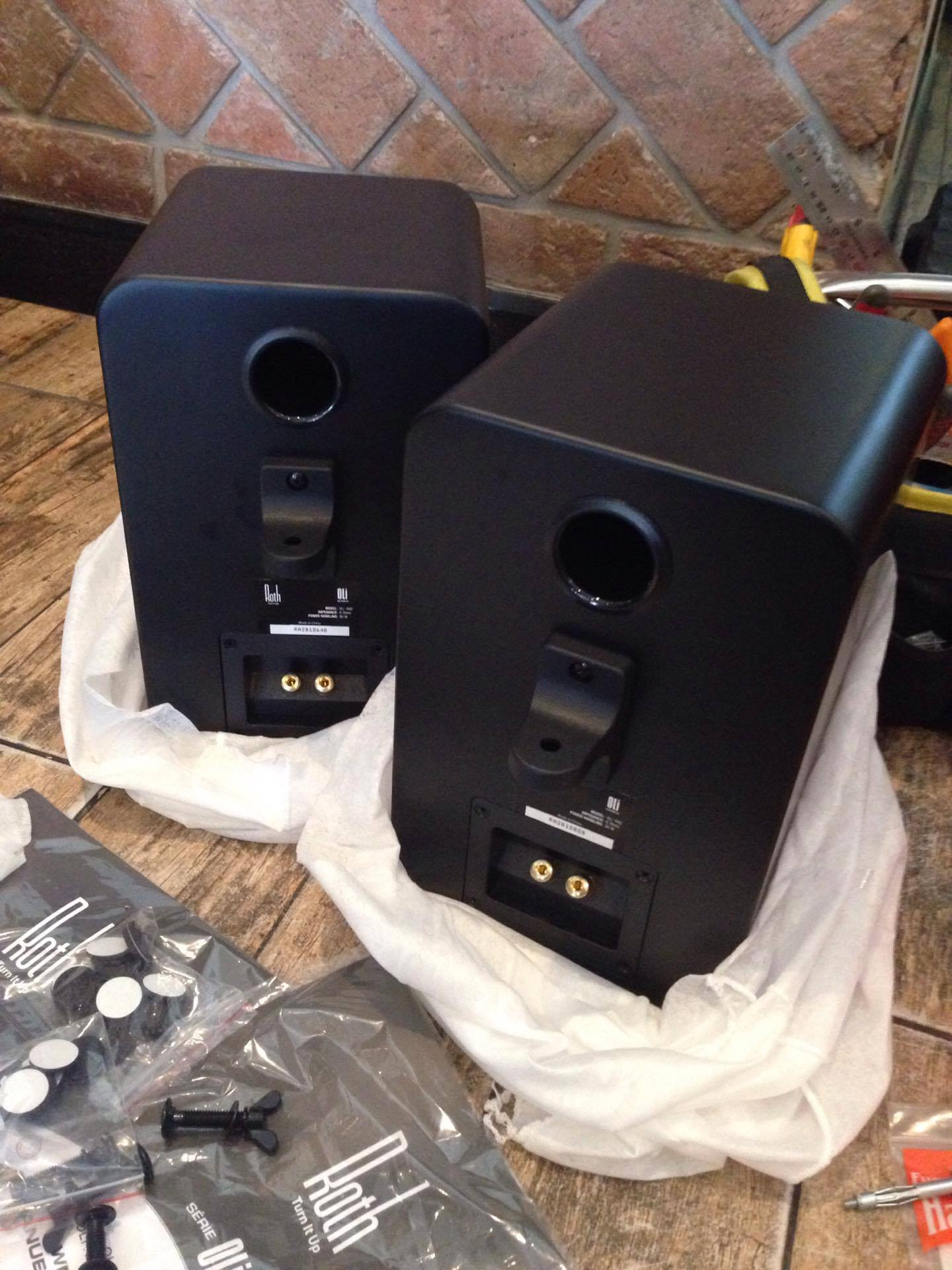 Rear Ported Roth Speakers and their mounts.