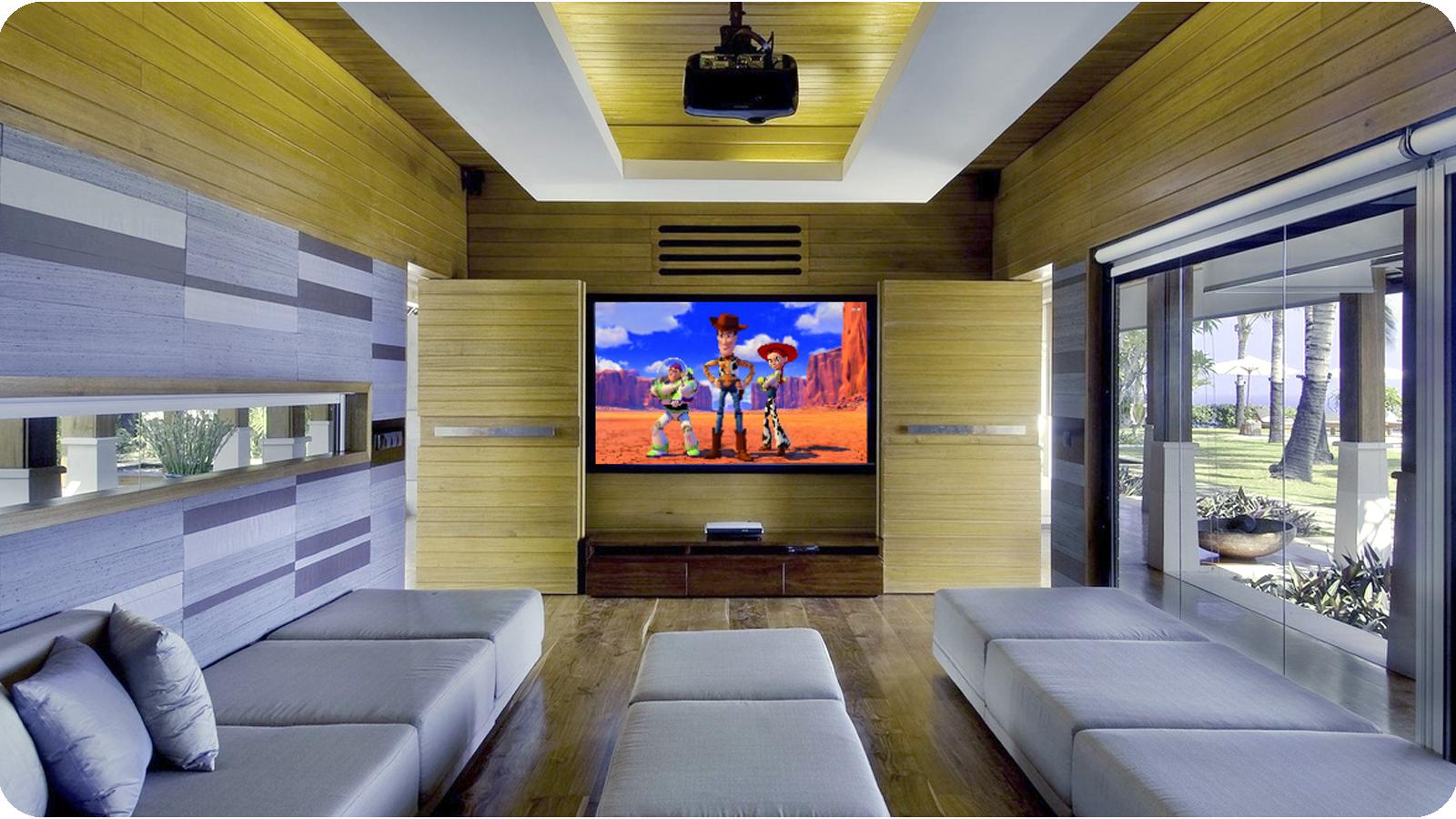 Toy Story Home CInema
