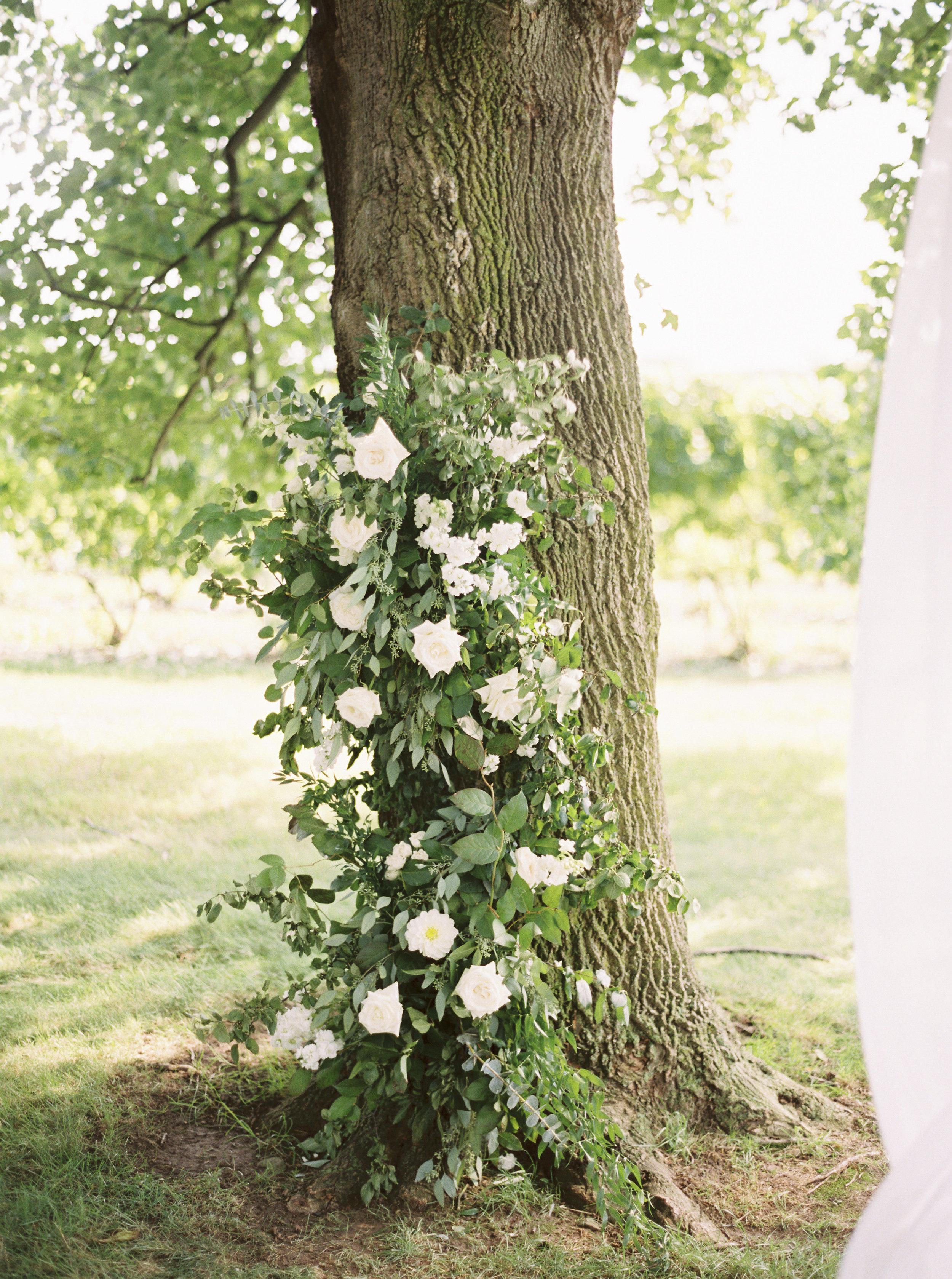Wedding___Nicole___Eric_315.jpg