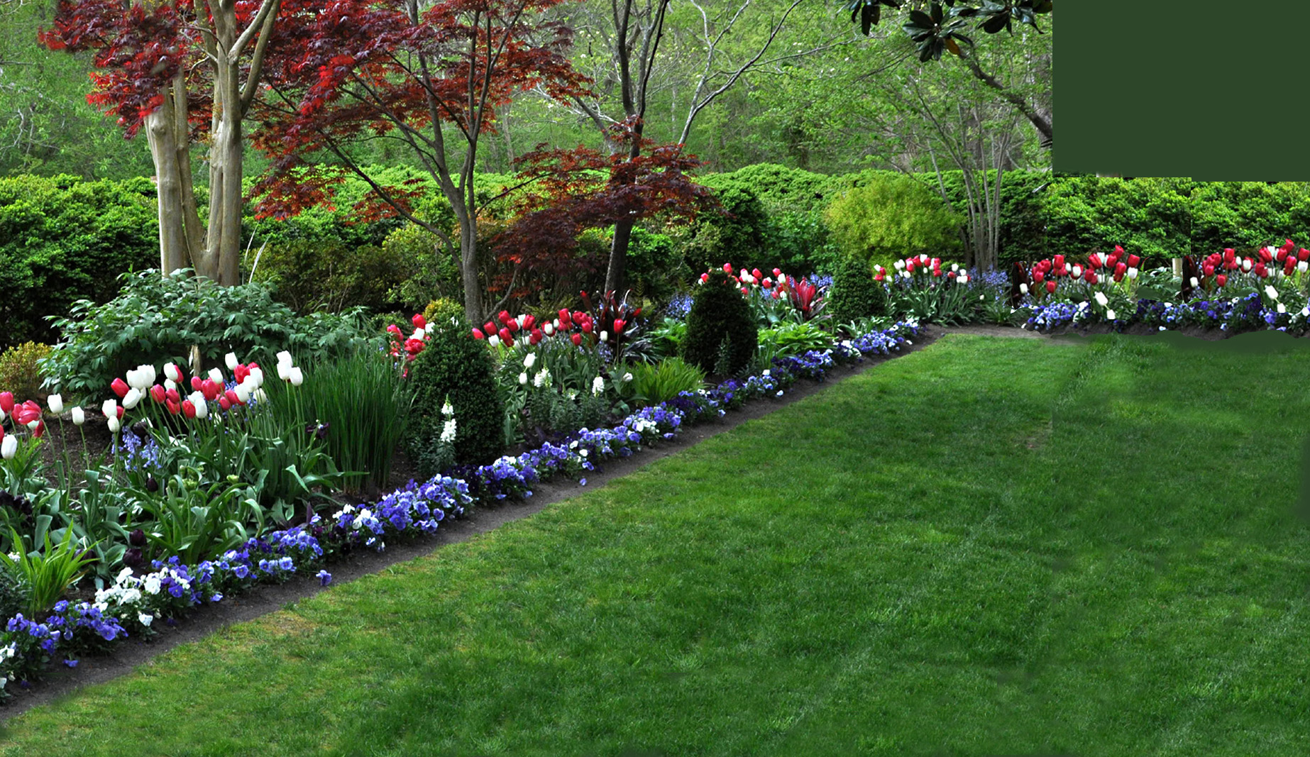 1.Eyre Hall red white blue garden.jpg