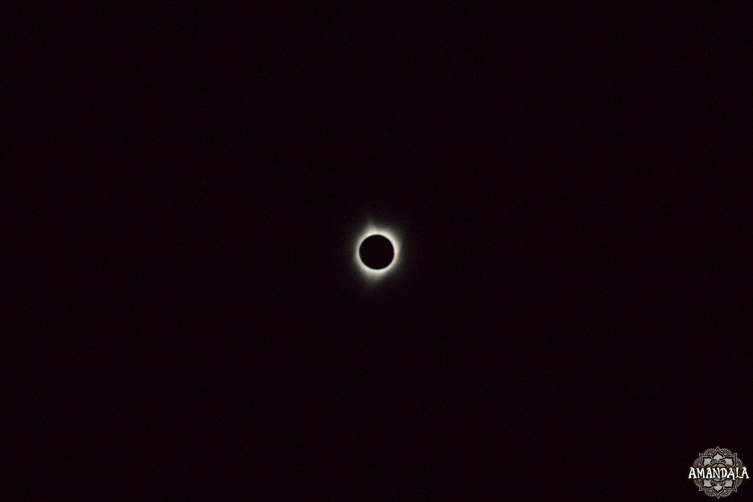 Eclipse (378).jpg