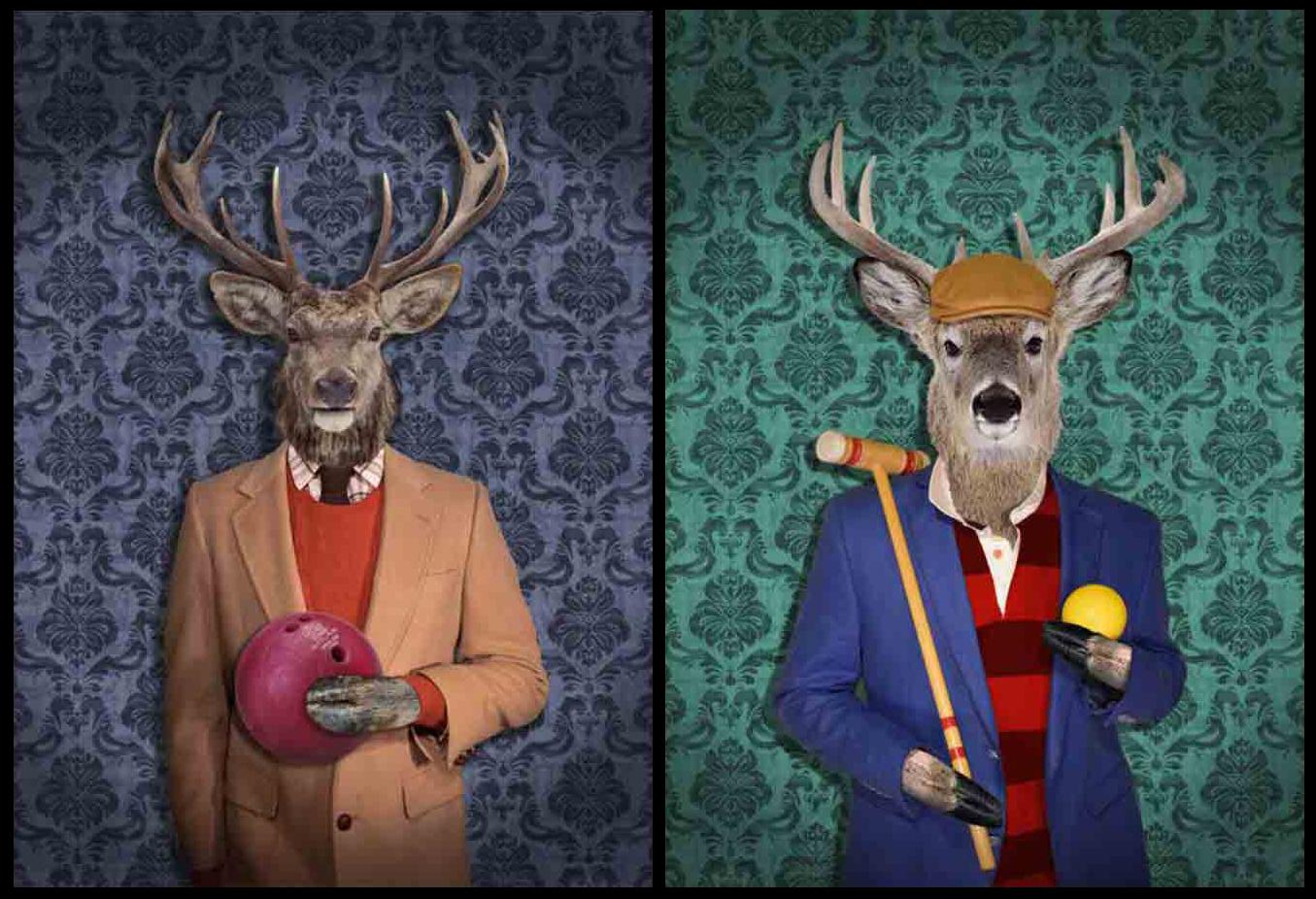 Elk-&-Deer-Images-(WEB-RES).jpg