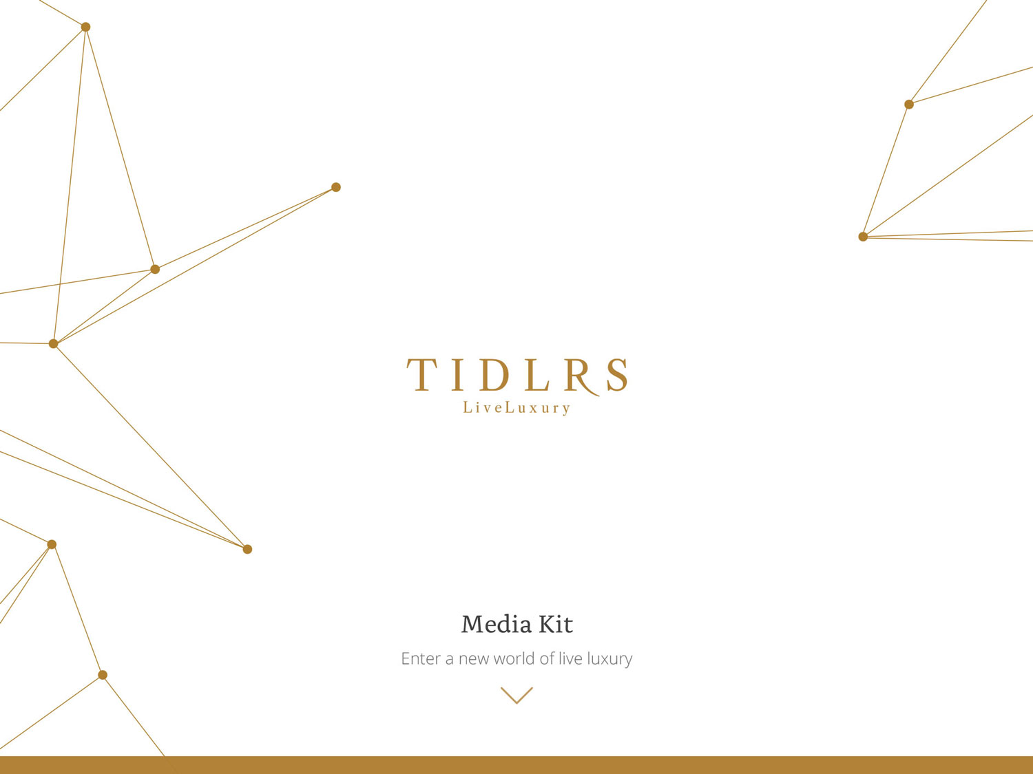 Media Kit Design / Editorial Content / Photography     Tidlrs