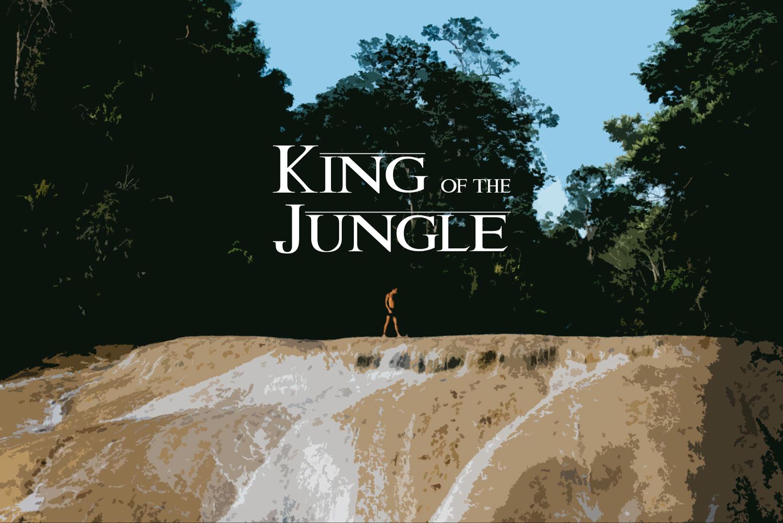 Hammocks_and_Ruins_Riviera_Maya_Mexico_Mayan_Trips_Palenque_Misol_Ha_Waterfalls_King_of_The_Jungle_Cover_1.jpg