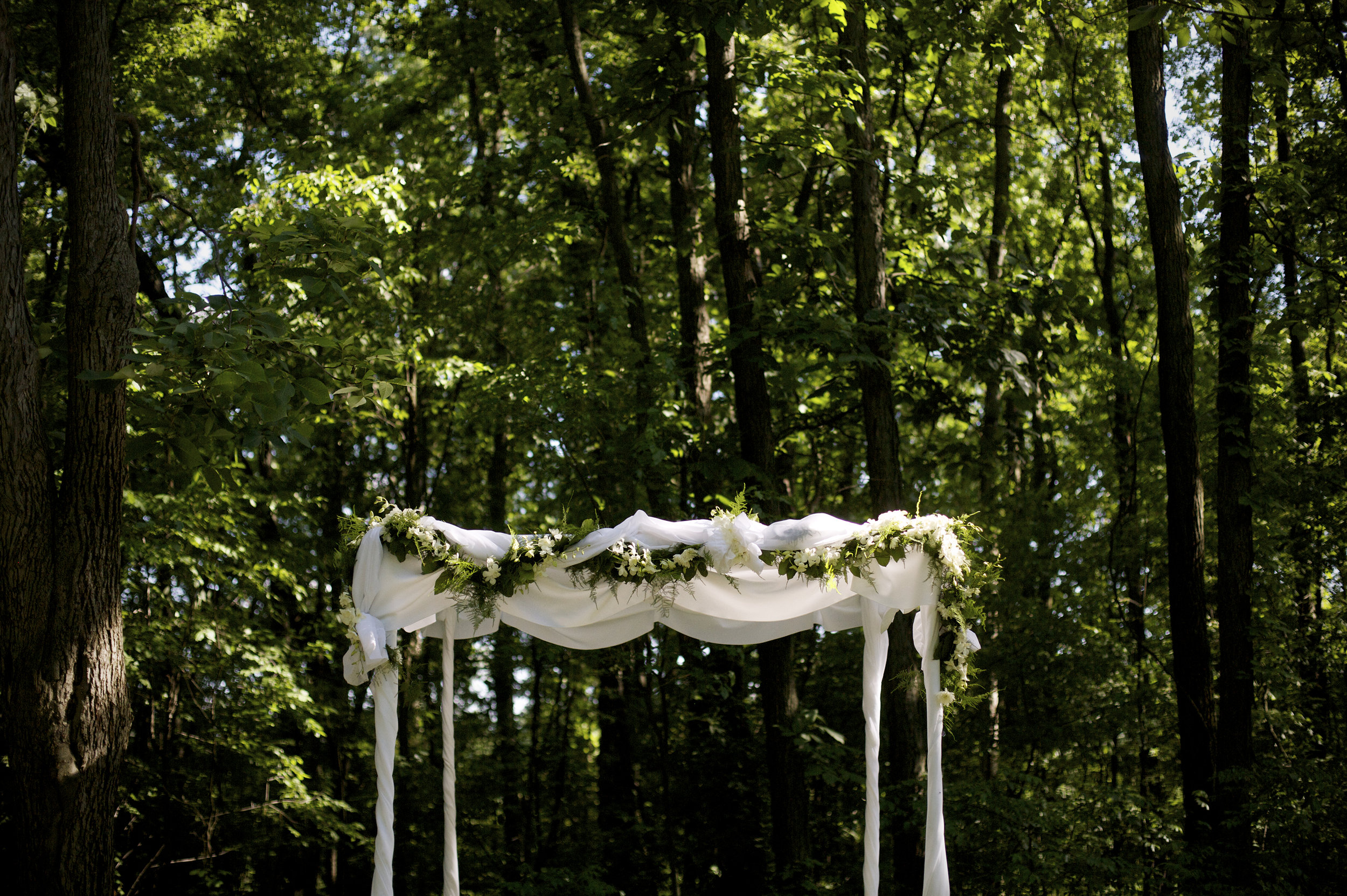Backyard Weddings002.JPG