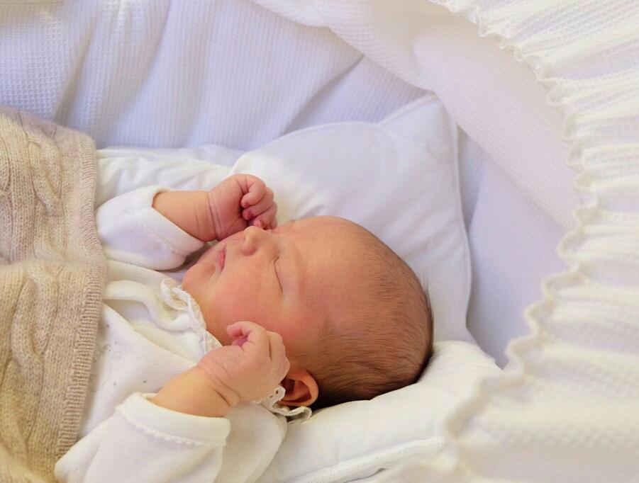 Zum Vergleich: Prinz Alexander könnte glatt der Zwilling seines jüngeren Bruders sein    Foto:  Prins Carl Philip, Kungahuset.se