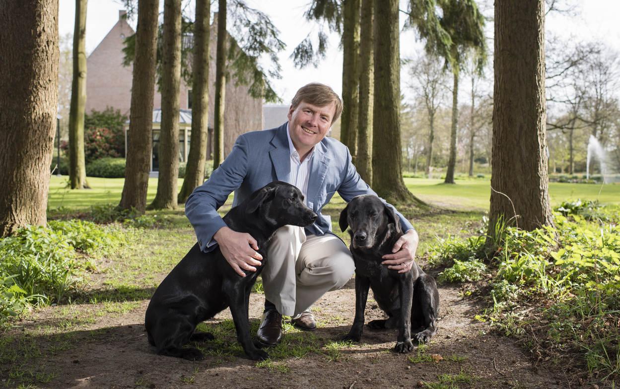 """""""Nala"""" und """"Skipper"""" haben für Nachwuchs in der königlichen Villa gesorgt.  ©RVD - Frank van Beek"""