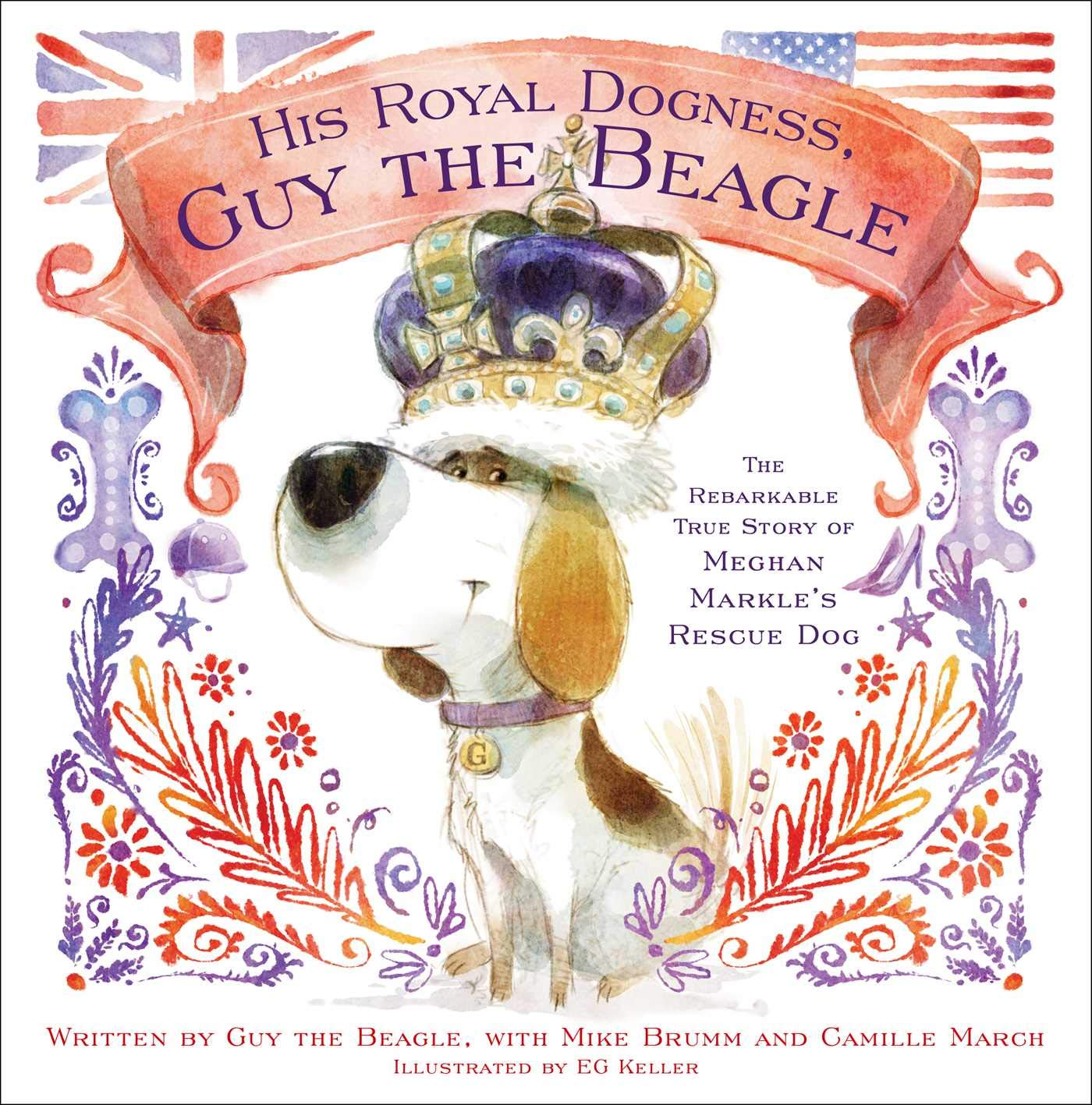 "Der Beagle von Herzogin Meghan hat nun ein eigenes Buch. namens """"  His Royal Dogness, Guy the Beagle: The Rebarkable True Story of Meghan Markle's Rescue Dog   "".    ©PR"