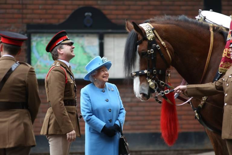 Wer sucht die Pferde der Queen aus, kauft sie, bildet sie aus? Und wie sieht der Alltag in den königlichen Kavallerieregimentern aus? Die Dokumentation zeigt den Alltag der berittenen Einheiten und deren jahrhundertealte Traditionen.  ©imago