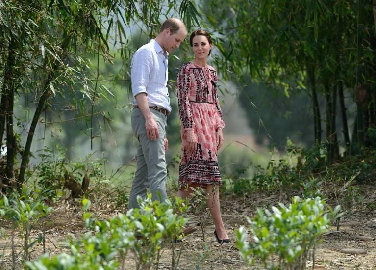 Prinz William und Herzogin Kate liegt viel an der Natur. Das Foto zeigt sie beim Besuch des Kaziranga National Parks in Indien.  ©imago images / i Images