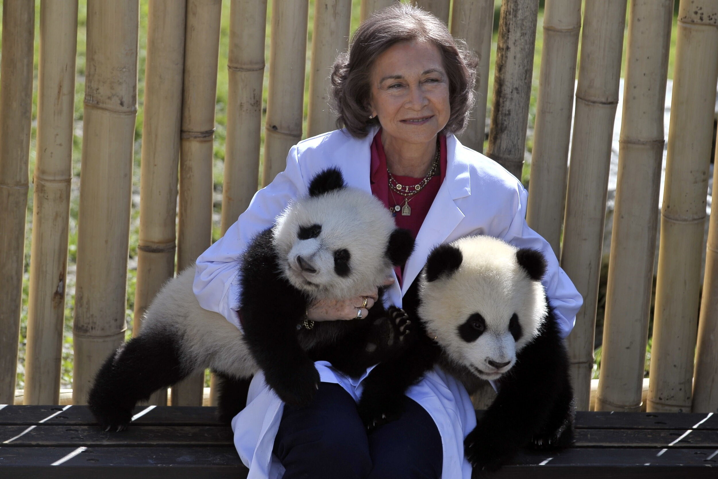 """Sofia von Spanien setzt sich für die Rettung der Umwelt ein. In Spanien wird sie deswegen auch gerne """"Öko-Königin"""" genannt.  © picture alliance"""