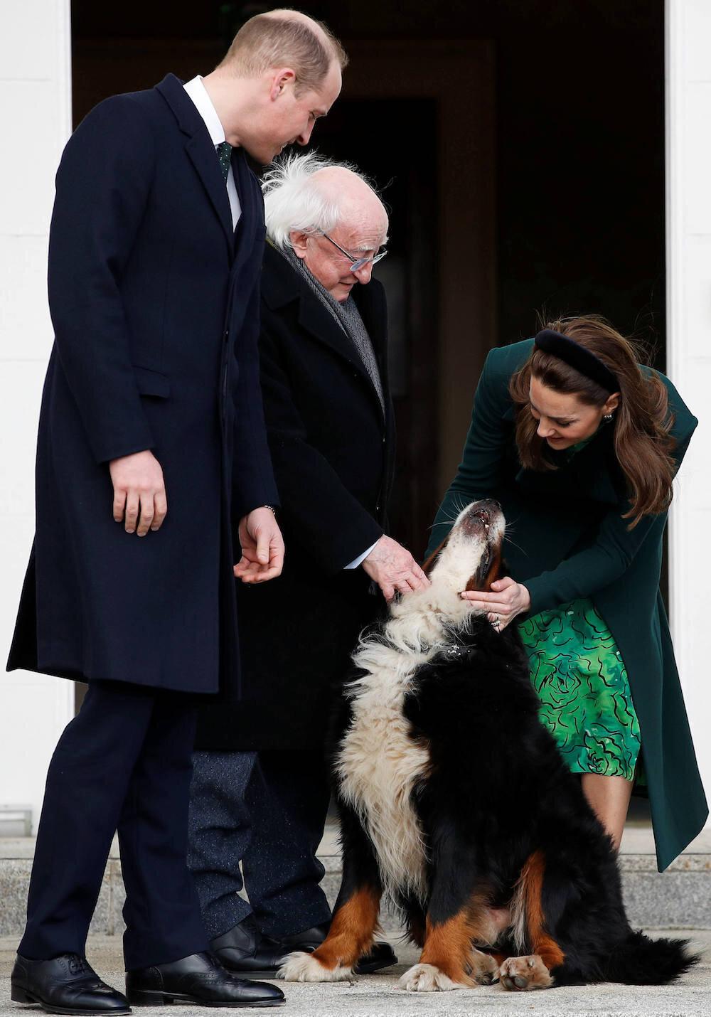 Herzogin Kate und Prinz William haben selbst einen Hund. Daher gab es auch keine Berührungsängste, als sie Präsidentenhund Bród trafen. © picture alliance / empics